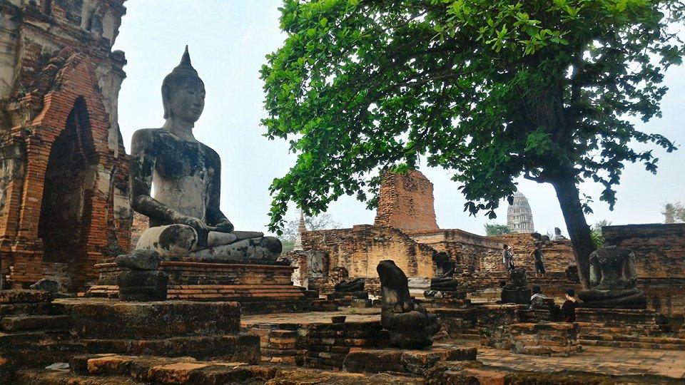 templi ayutthaya buddha