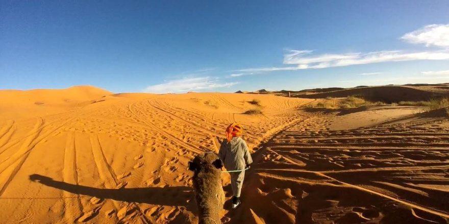 deserto dromedario hassan