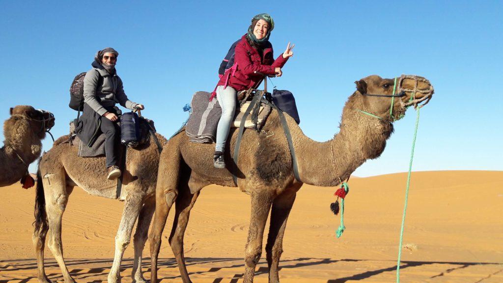passeggiata dromedario deserto